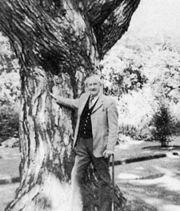 Tolkien vid sitt älsklingsträd